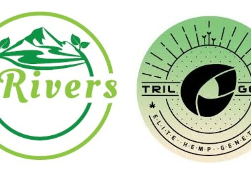 3 Rivers Biotech Enters into Agreement to Distribute Elite Hemp Varieties from Trilogene Seeds